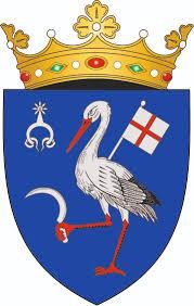 ANUNȚ CU PRIVIRE LA CONVOCAREA CONSILIULUI RAIONAL ÎN ȘEDINȚĂ ORDINARĂ LA DATA DE 27.04.2021